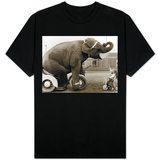 Elephant and Girl T-shirts