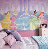 Perfect Princess Chair Rail Prepasted Mural Wallpaper Mural