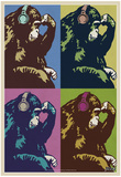 Steez Monkey Thinker Quad Pop-Art Prints