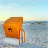 Summer B III Posters