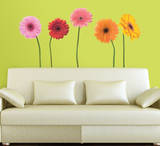 Gerber Daisies Peel & Stick Wall Decals Wall Decal