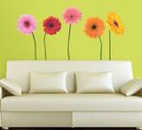 Gerber Daisies Peel & Stick Wall Decals Vinilo decorativo
