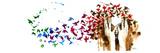 Lora Zombie - Birds Birds Birds Plakát