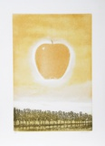 Golden Apple Collectable Print by Hank Laventhol