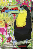 Toucan Stretched Canvas Print