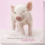 In The Pink! - Winking Pig Stretched Canvas Print