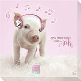 In The Pink! Ipod Stretched Canvas Print