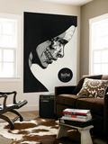 Black Toad Wall Mural by Hidden Moves