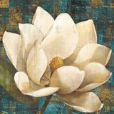 Magnolia Blossom Turquoise Poster by Albena Hristova