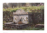 Tuscan Fountain Prints by Rod Chase
