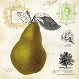 Pear Notes Print by Sarah Mousseau