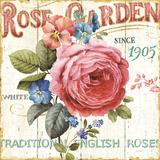 Jardín de rosas I Láminas por Lisa Audit