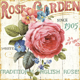 Rose Garden I Prints by Lisa Audit