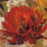 Fiery Dahlias II Plakat af Silvia Vassileva