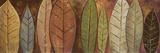 Tall Leaves II Poster von Patricia Quintero-Pinto