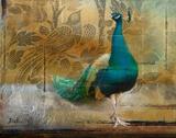 Feathered Dreams II Kunstdrucke von Patricia Pinto