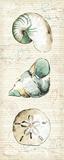 Ocean Prints VI Posters by  Pela
