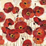Bold Poppies Prints by Silvia Vassileva