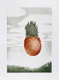 Pineapple Collectable Print by Hank Laventhol
