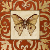 Moroccan Butterfly II Poster by Patricia Quintero-Pinto