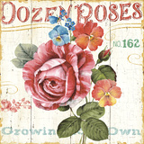 Rose Garden II Poster by Lisa Audit