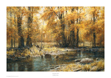 Autumn's Veil Prints by Robert Peters