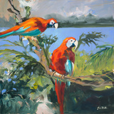 Parrots at Bay II Prints by Jane Slivka