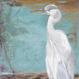Tropic Heron II Print by Patricia Pinto