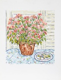 Flower Pot Limited Edition by Beverly Hyman
