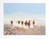 Dust In The Desert Limited Edition by Gwendolyn Branstetter