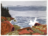 Rocky Shore Collectable Print by Joe Fiore