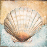 Seashell Collection III Posters by Patricia Quintero-Pinto