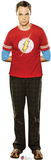 Sheldon - Big Bang Theory Cardboard Cutouts