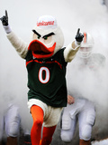 University of Miami - Sebastian Photographic Print  by  Steven Murphy
