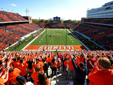 University of Illinois - Illinois Stripe the Stadium Wall Mural Photographie par Lance King