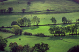 Landscape Cumbria Fotoprint van Charles Bowman