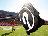 University of Georgia - Georgia Football Foto