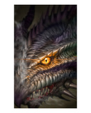 Eye of the Dragon Premium Giclee Print by Martin Mckenna