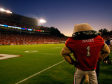 University of Georgia - Sanford Stadium - Hairy Fotografisk tryk
