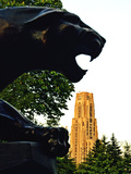 University of Pittsburgh - Cathedral and Panther Plakat af Will Babin