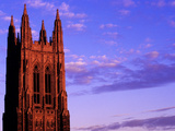 Duke University - Purple Haze Photographic Print