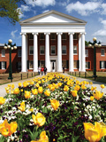 University of Mississippi (Ole Miss) - Yellow Tulips and Lyceum Photographic Print