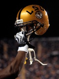 Louisiana State University - Gold Helmet Photo