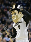 Purdue University - Purdue Mascot Photographic Print