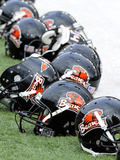 Oregon State University - Oregon State Football Helmets Photographic Print