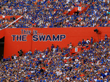 University of Florida - This Is the Swamp Photographie