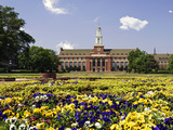 Oklahoma State University - Flowers Bloom Photographic Print