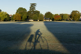 Cyclist casts a shadow of himself in early morning Photographic Print by Charles Bowman