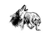 Wolves (Revenge of the Vampire, Illustration no. 33) Reproduction procédé giclée Premium par Martin Mckenna