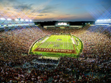 Florida State University - Florida State Football Foto af Mike Olivella